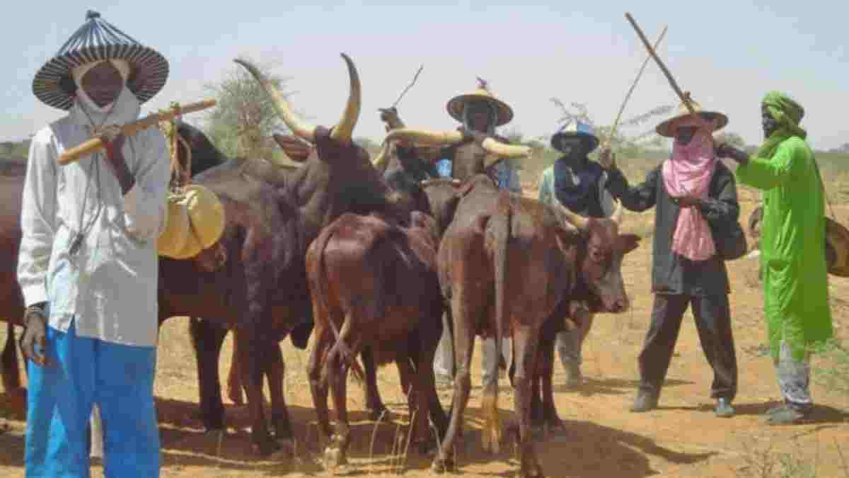 Tangale stool crisis is Emblematic of Fulani Conquest - Group