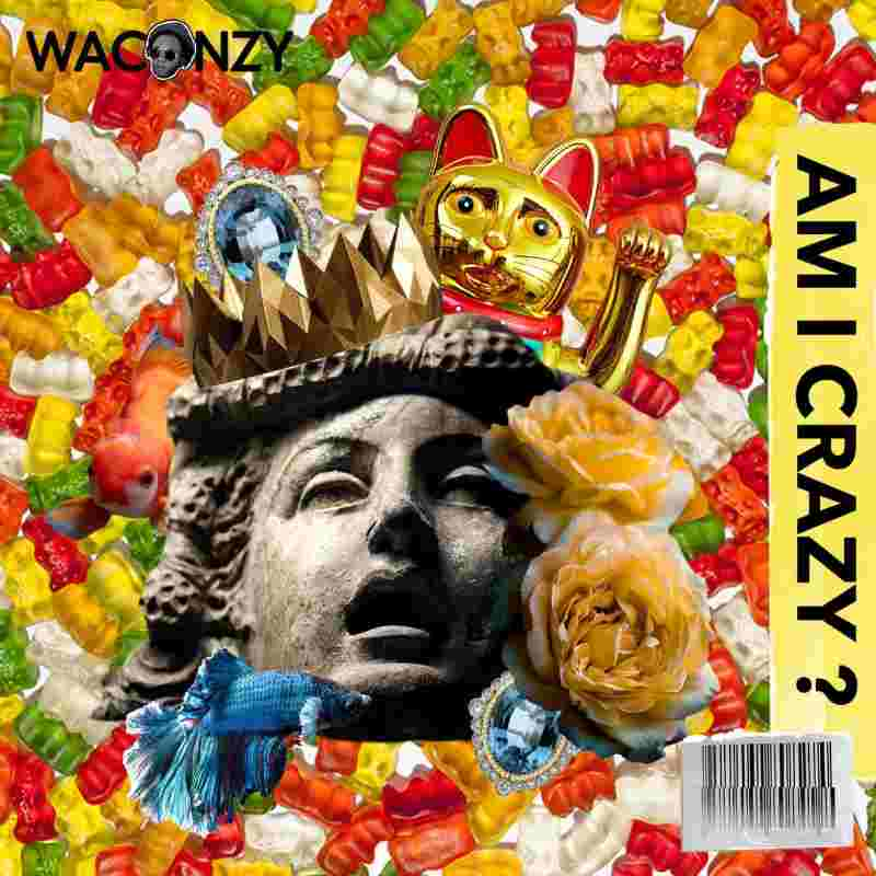Waconzy - Am I Crazy