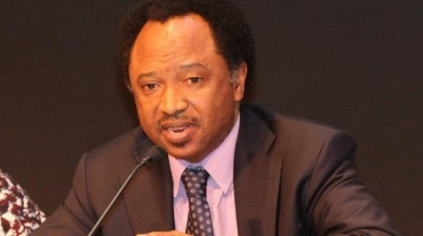 Civil Servants Mustn't Be Forced To Join Political Party – Shehu Sani