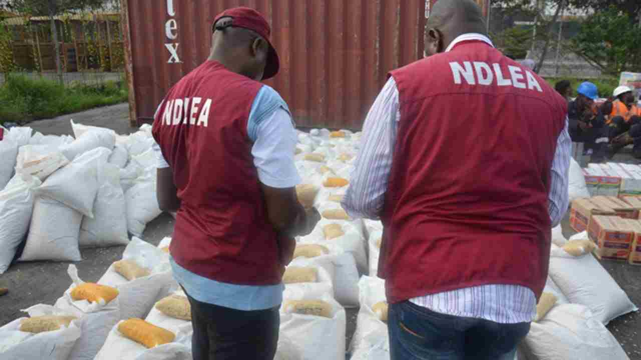 Drug abuse rate higher in Southern Nigeria - NDLEA