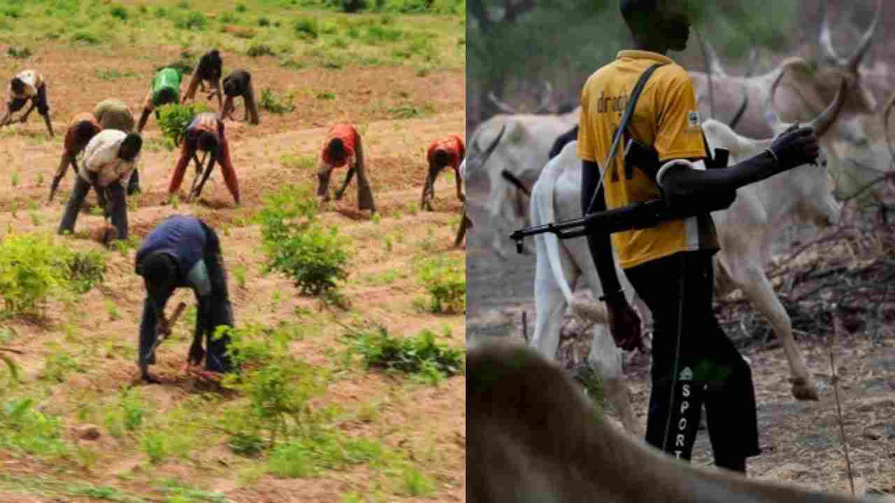 Famine looms as farmers fear Bandits, Herdsmen, others ahead of Rainy Season