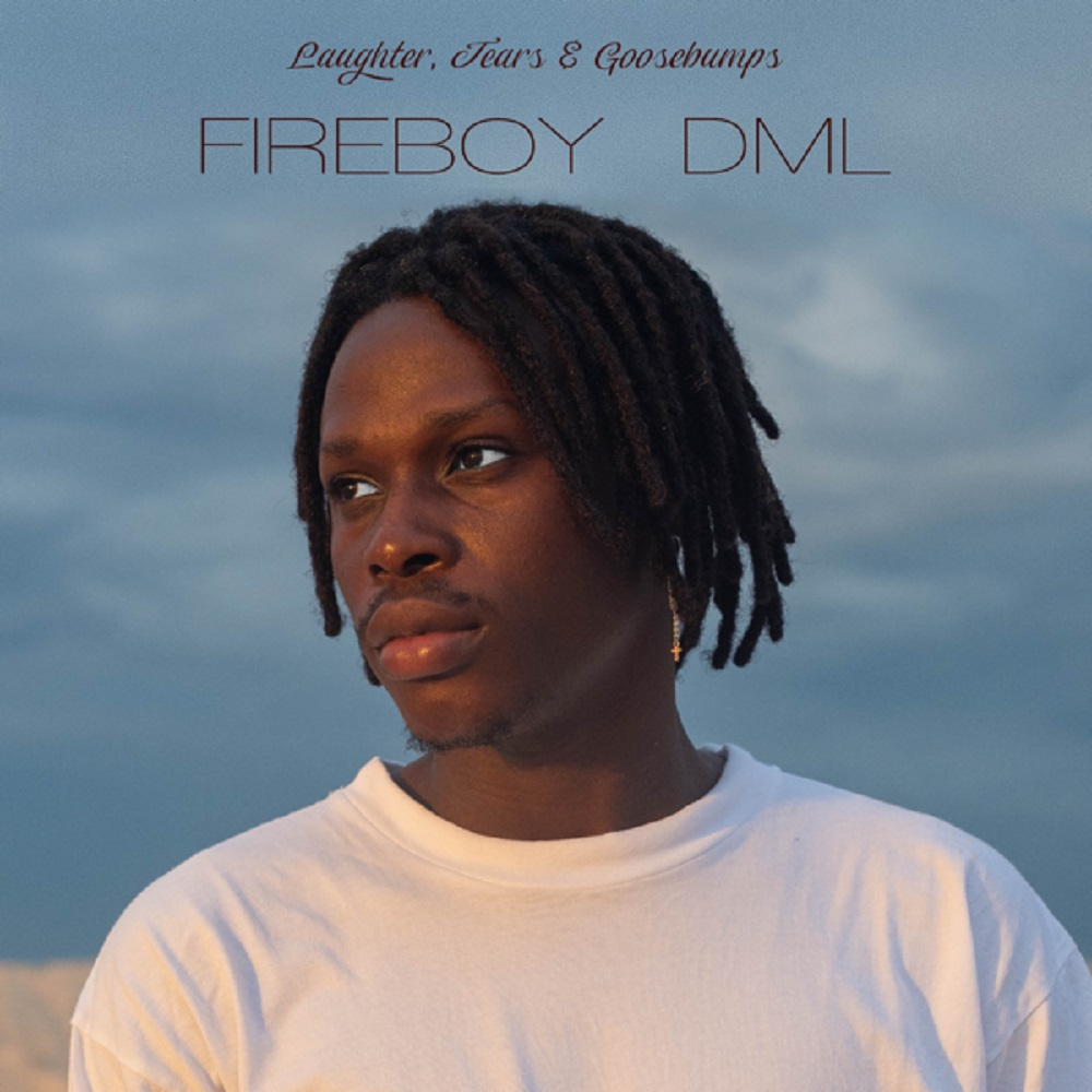 Fireboy DML - High On Life