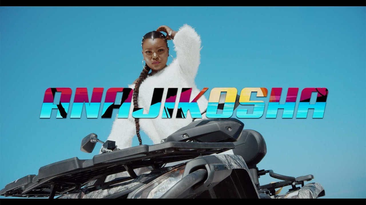 Harmonize - Anajikosha (Official Video)
