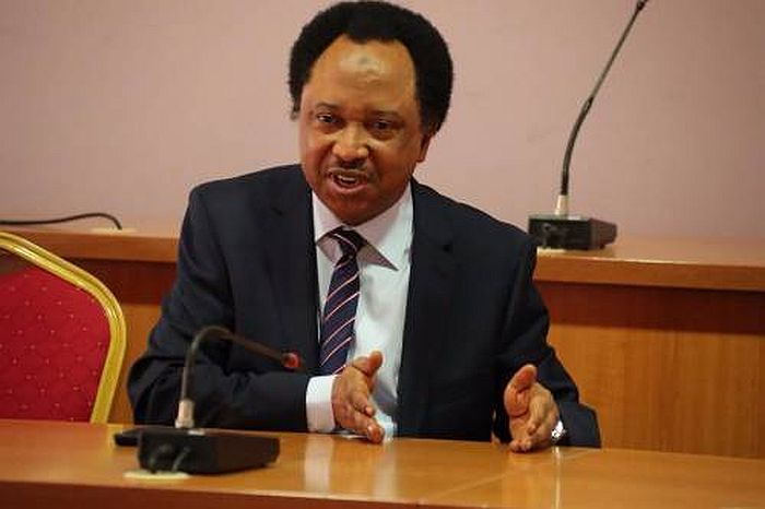 If SARS Is Working, Why Has Terrorism Continued – Shehu Sani Blasts Northern Govs