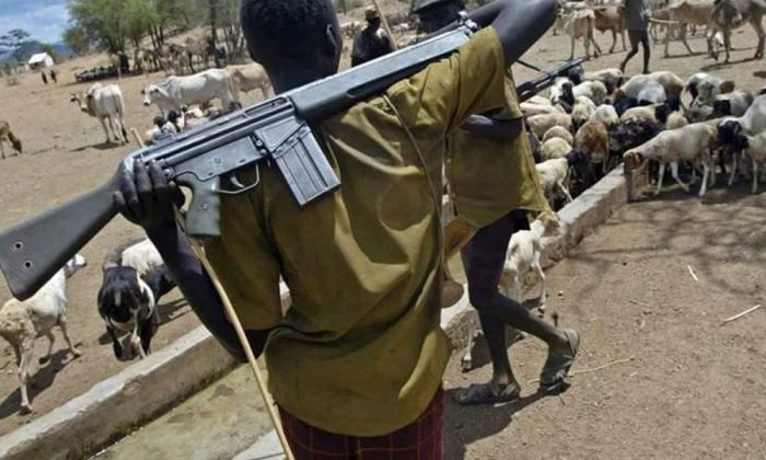 Lady Butchered By Fulani Herdsmen In Abakaliki Dies (Graphic Video)