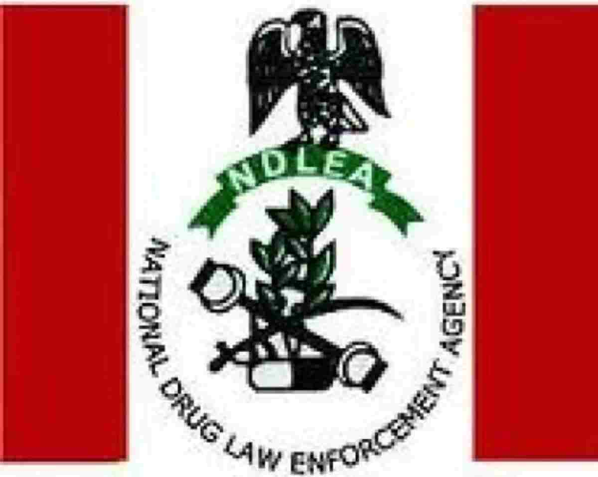 NDLEA arrests Chadian over drug trafficking in Taraba State