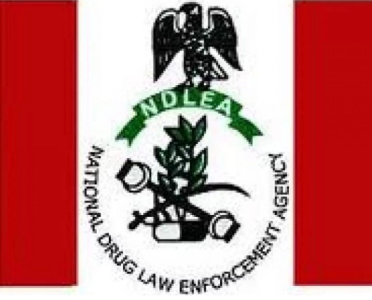 NDLEA halts screening of 5,000 applicants as Buhari appoints new DG