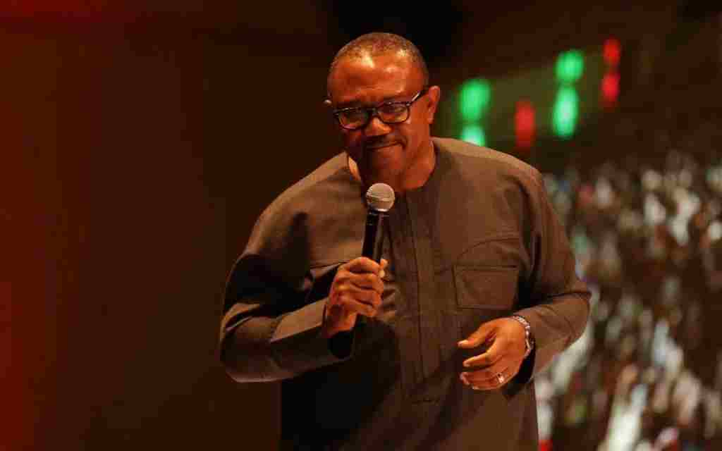 Peter Obi advocates region-like security system in Nigeria