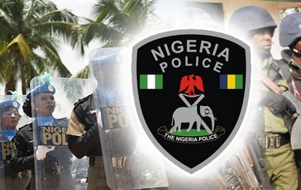 Police Dock Man For Installing Himself Monarch In Delta