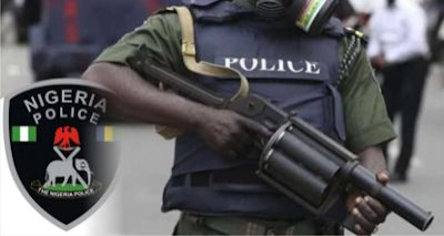 Police, vigilantes kill kidnappers, rescue victims in Niger