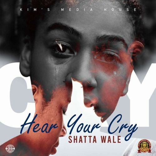 Shatta Wale - Hear Your Cry