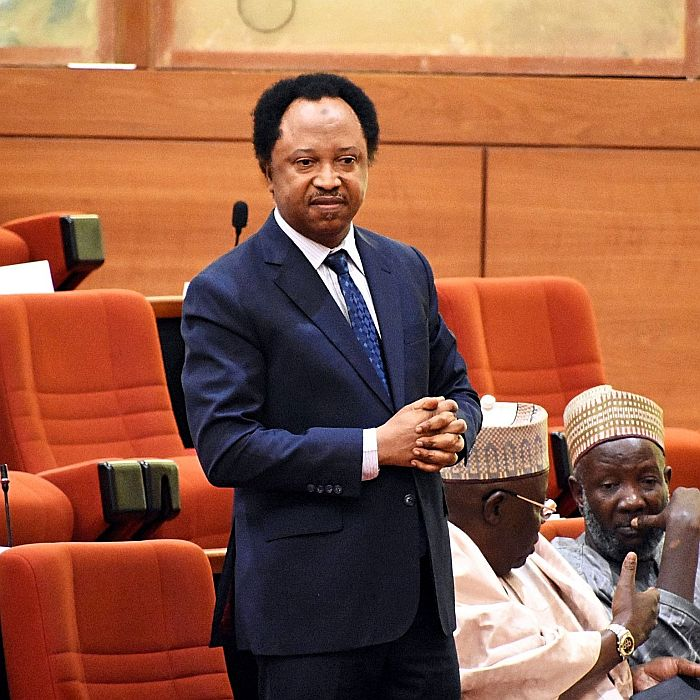 Insecurity: Sheikh Gumi stepped in because Buhari failed Nigeria - Shehu Sani