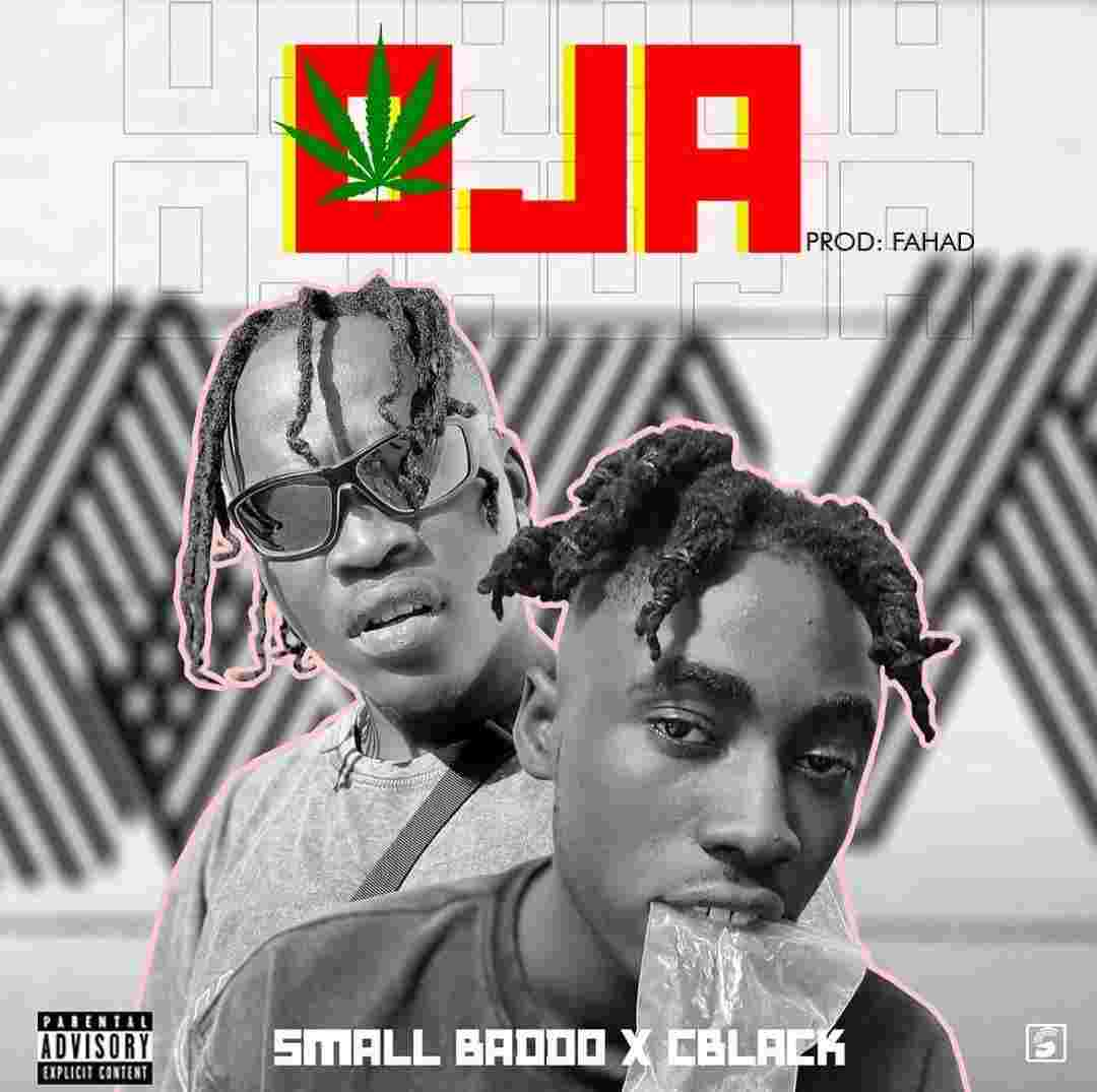 Small Baddo Ft. C Blvck - Oja