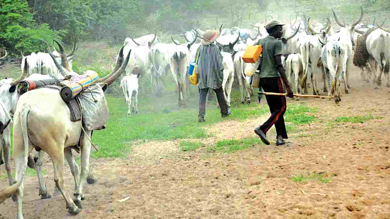 Suspected herdsmen Hack another girl to Death in Ogun State