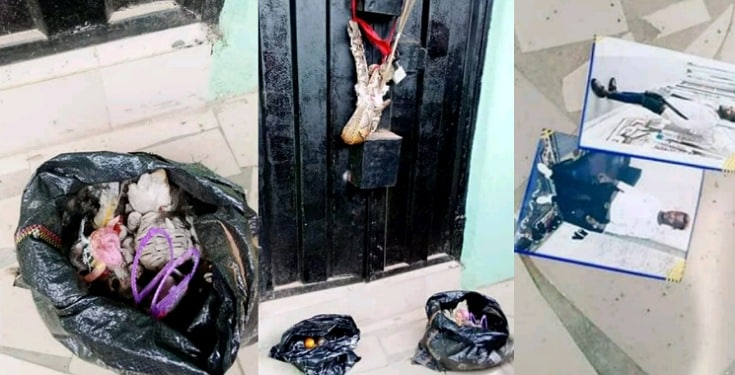 Woman Dumps Snake Charm at the Shop of Lady Who Snatched her Husband
